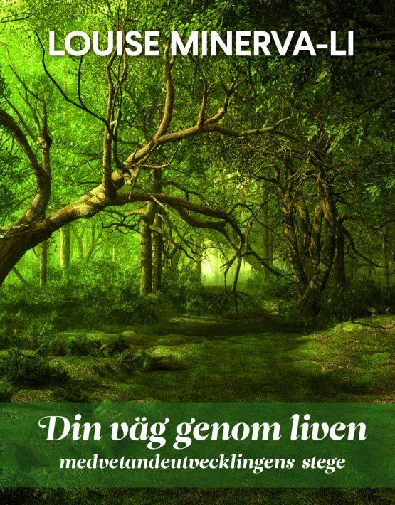 Din väg genom liven : medvetandeutvecklingens stege av Louise Minerva-Li